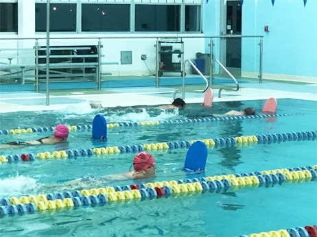 Lemont Big Fins Swim Team